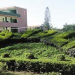 img Instituto Tecnológico San Ignacio de Loyola – ITESIL